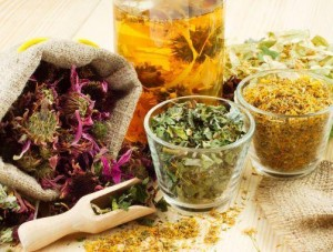 Herbs against dyspepsia | Ayurveda Clinic Bansko