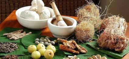 Ayurveda herbs in hepatitis A and B