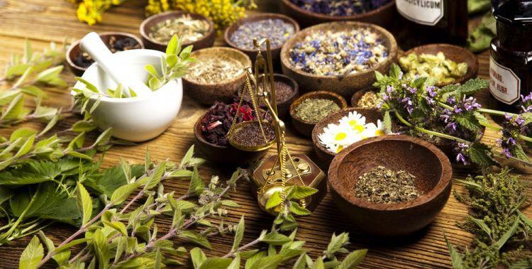 Herbs for treating edema
