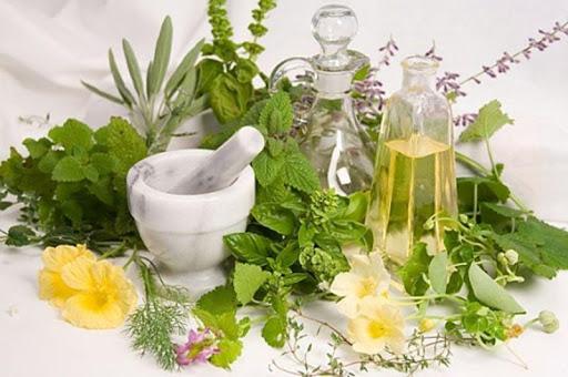 Билки за лечение на хронична кашлица