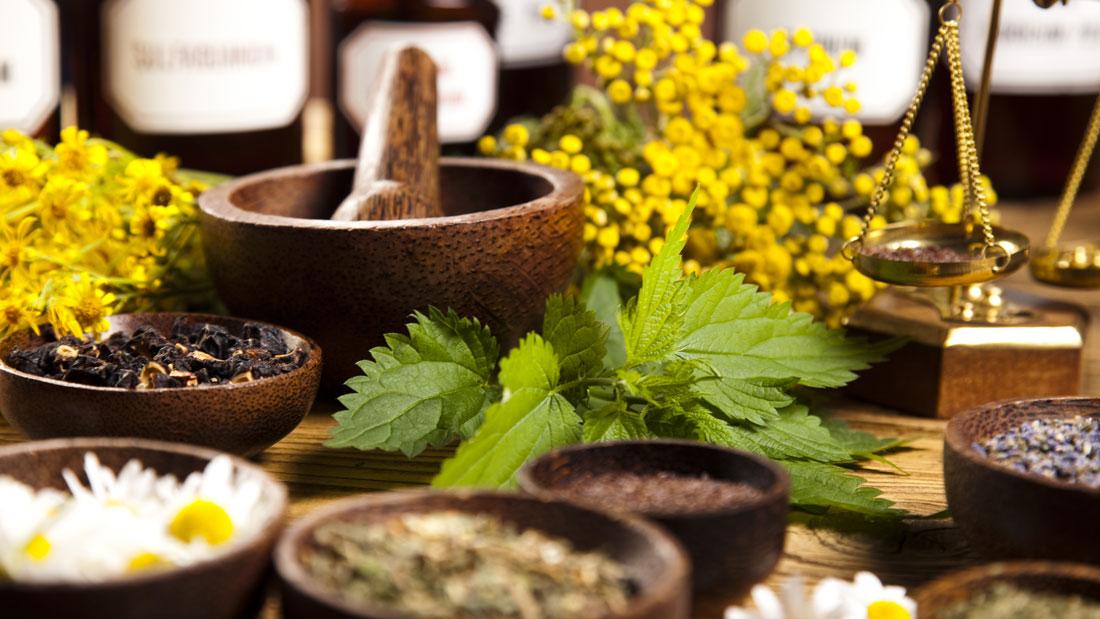 Ayurvedic Herbs | Ayurveda Bansko