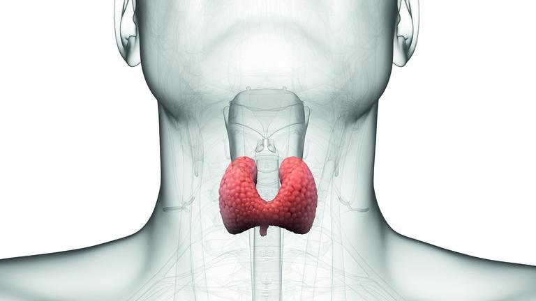 Лечение на щитовидна жлеза