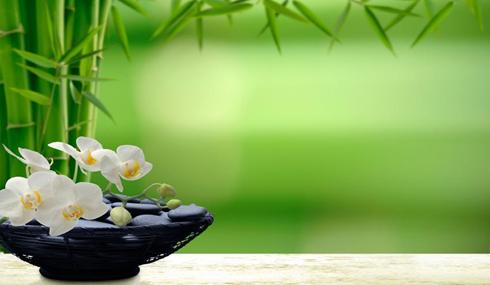 Ayurveda - thérapies pour la libération des sentiments