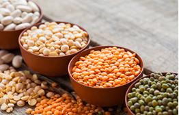 Nourriture dans l'Ayurveda - légumineuses et céréales